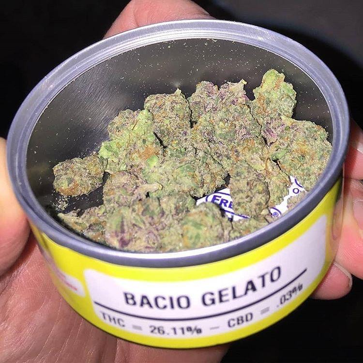 Buy Gelato budcans | Min Order 10 | Best Bud Cans Online |