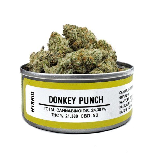 Buy Donkey Punch Space Monkey budcans
