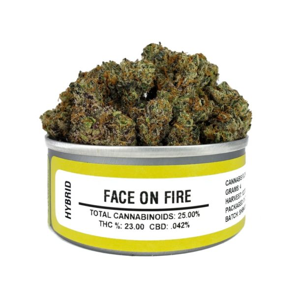 buy face on fire budcans
