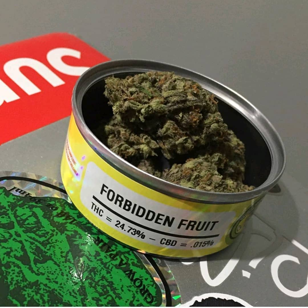 Buy Forbidden Fruit Weed | Best Bud Cans Online |