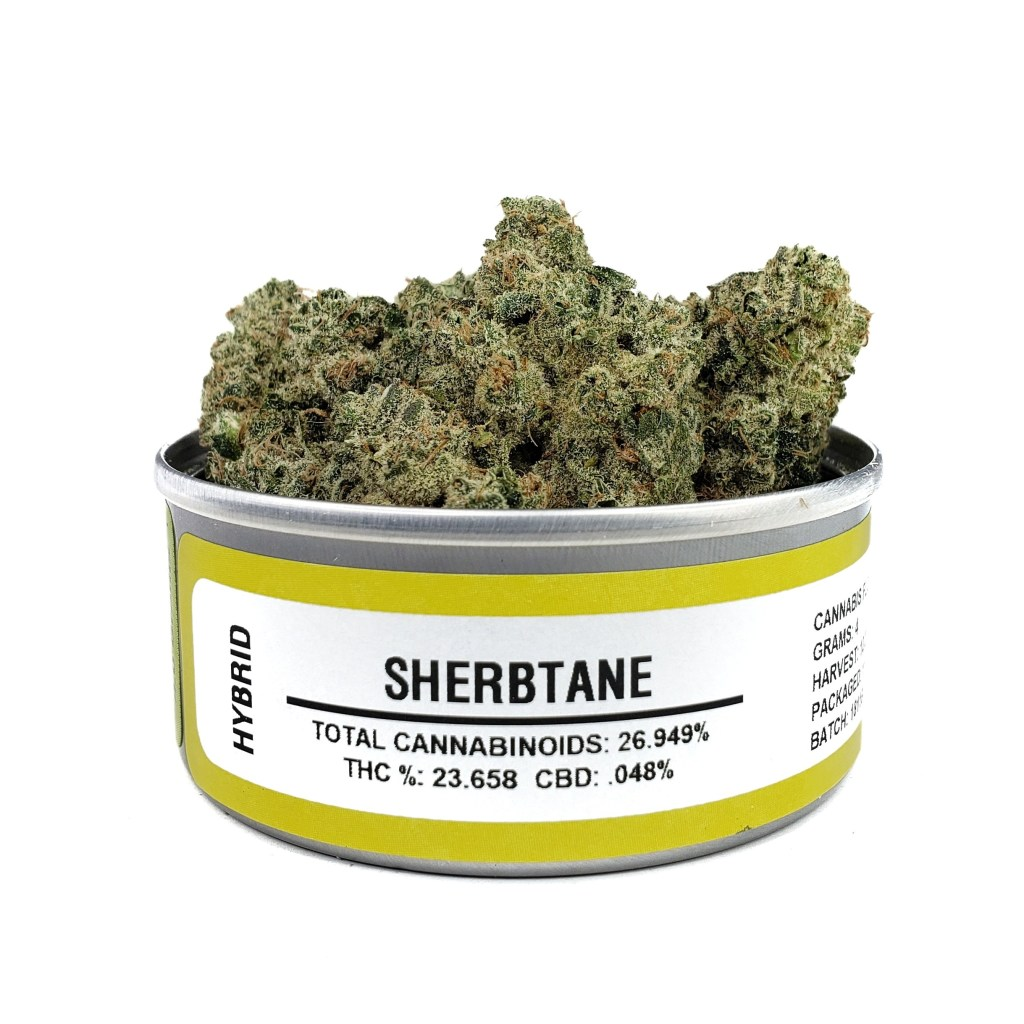 Buy Sherbtane Space Monkey | Min Order 10 | Best Bud Cans Online |